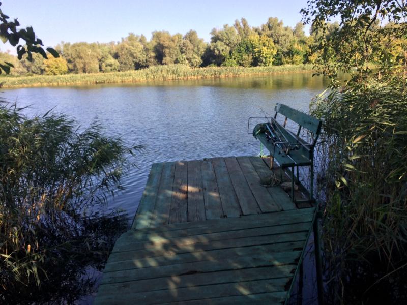 Зелёный Берег: мостик на берегу